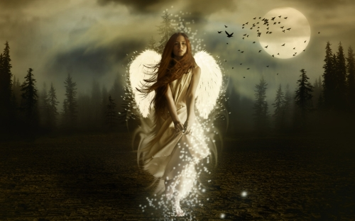 fairy-wide